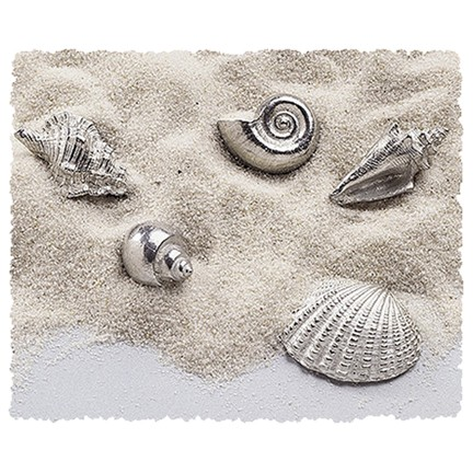 Seashells Pocket Charms Bulk 50 Piece ★ Only $1.54ea USA FREE SHIPPING